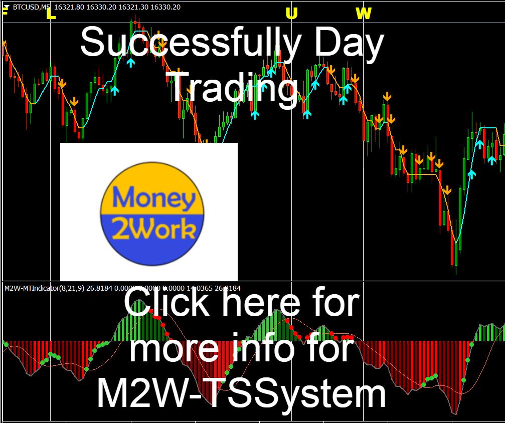 M2W-TSSystem